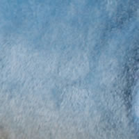 Bleu clair-17
